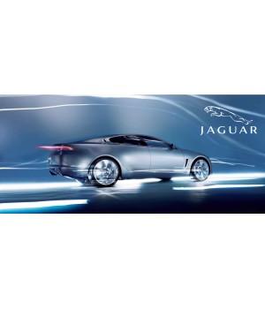 Чаша Jaguar-2